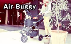 Air Buggy