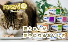 猫ちゃんが夢中になるおいしさプレミアムFORZA10