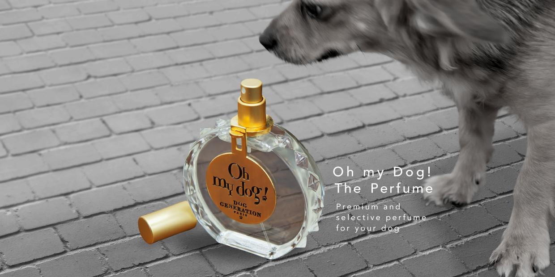 oh my dog